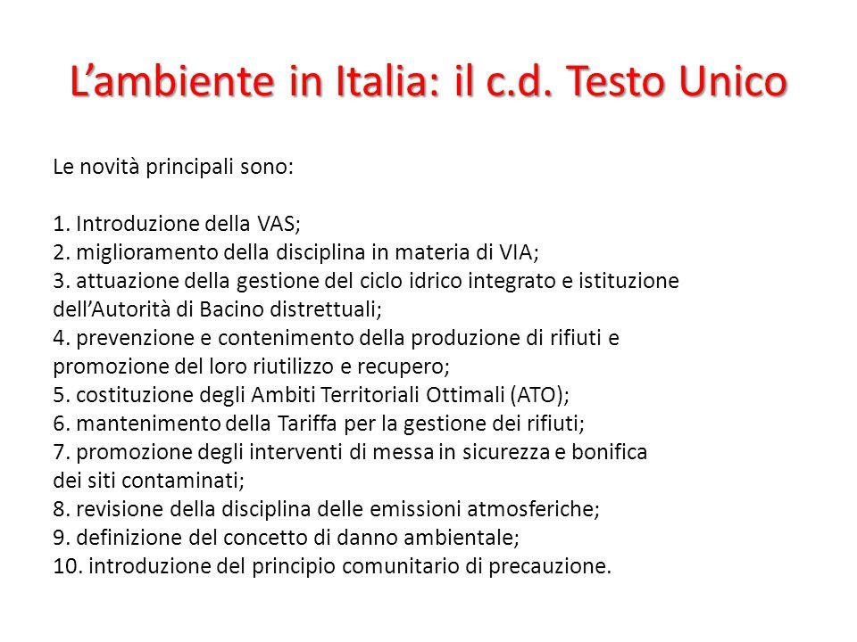 L'ambiente in Italia: il c.d. Testo Unico Le novità principali sono: 1. Introduzione della VAS; 2. miglioramento della disciplina in materia di VIA; 3