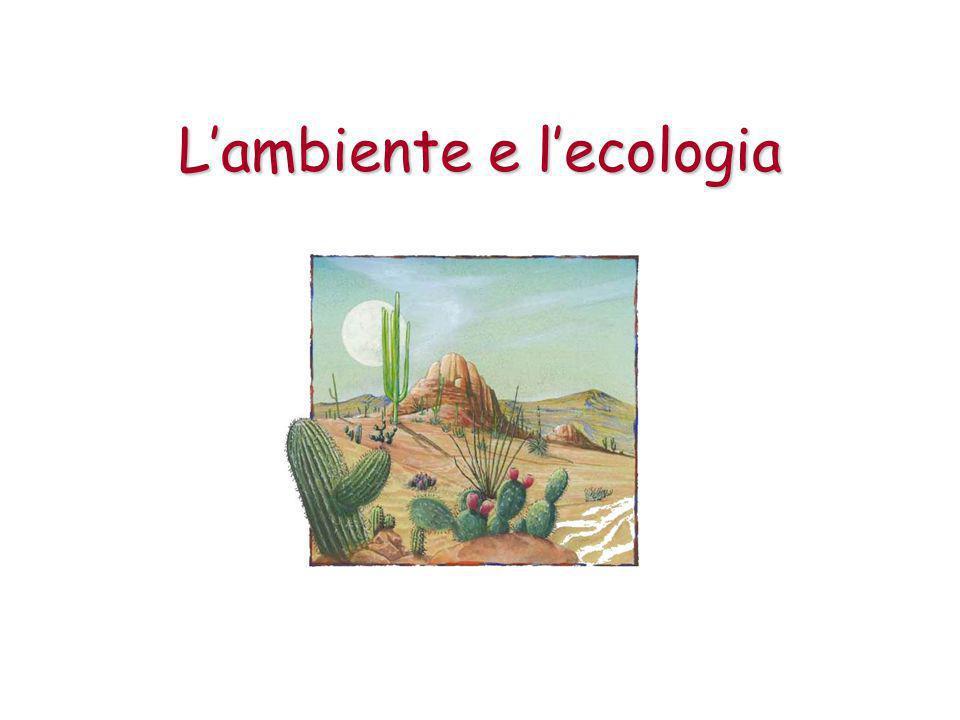 L'ecologia L'ecologia è la scienza che studia i rapporti tra organismi viventi e l'ambiente fisico in cui vivono.