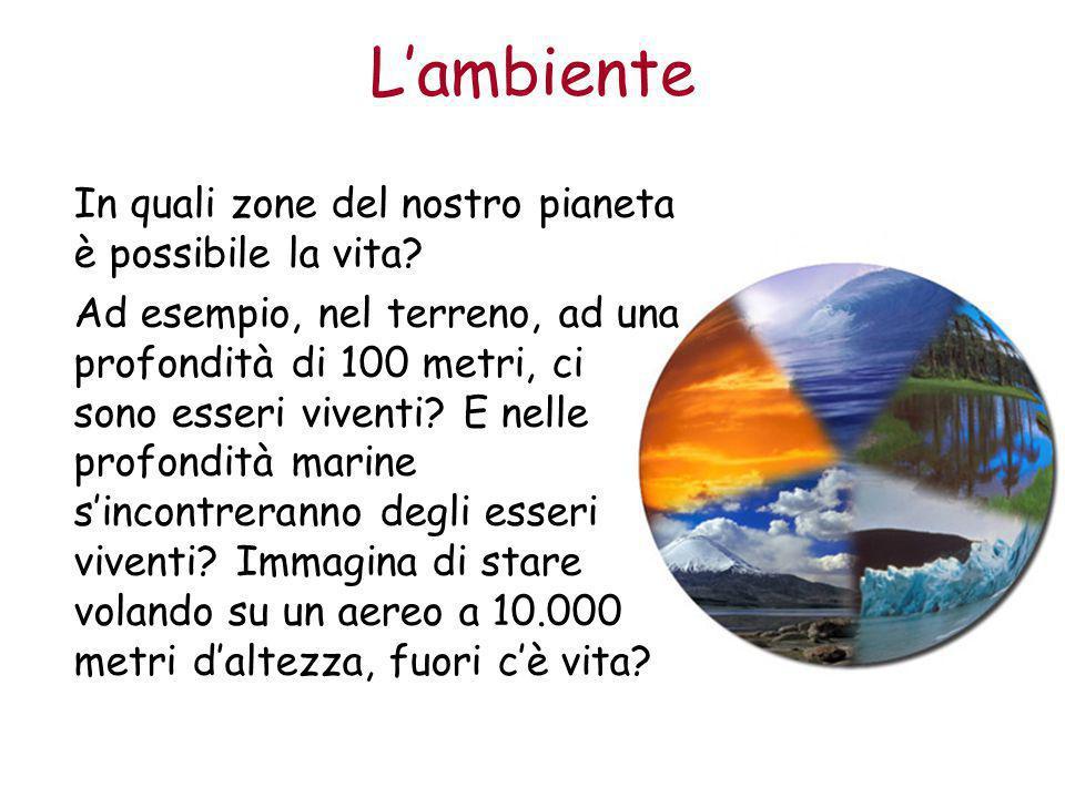 L'ambiente Le zone del pianeta Terra in cui le condizioni ambientali permettono lo sviluppo della vita si chiama biosfera.