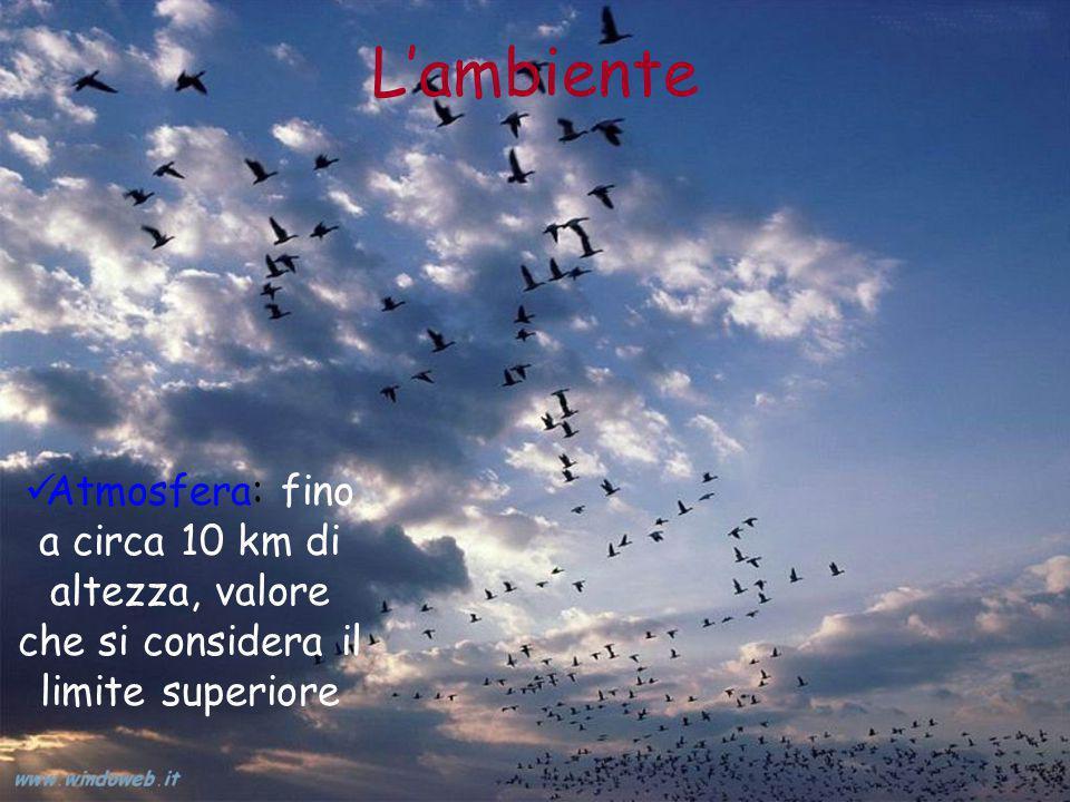 L'ambiente Atmosfera: fino a circa 10 km di altezza, valore che si considera il limite superiore