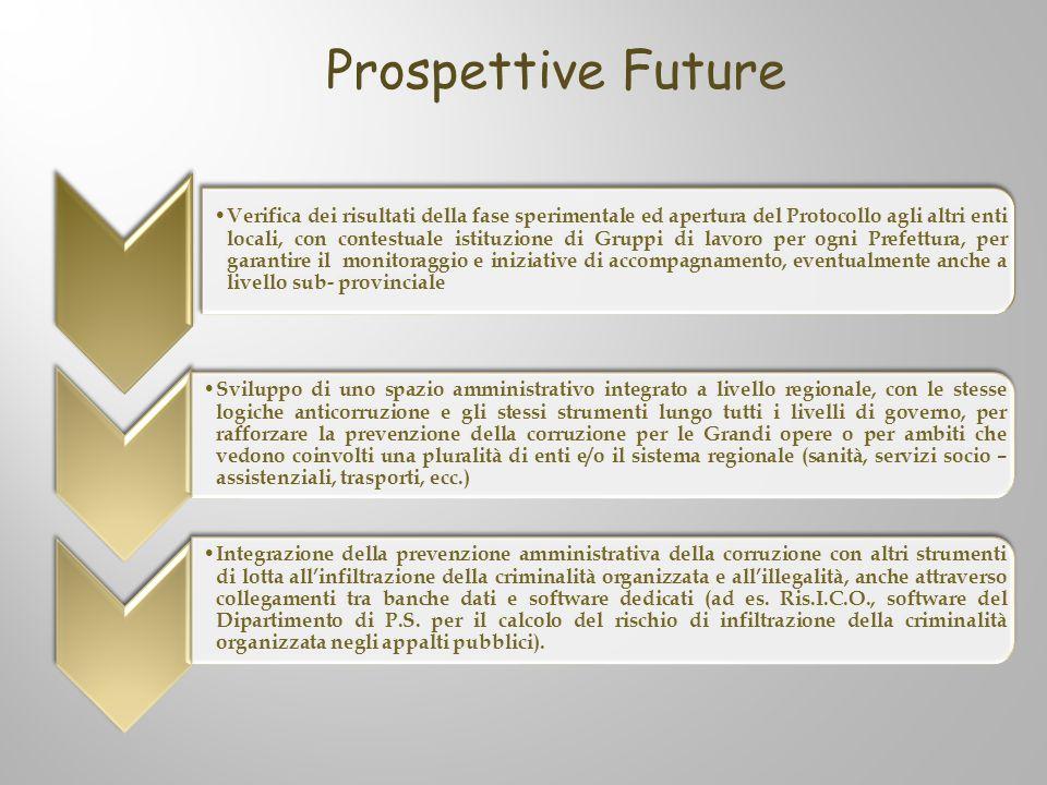 Verifica dei risultati della fase sperimentale ed apertura del Protocollo agli altri enti locali, con contestuale istituzione di Gruppi di lavoro per