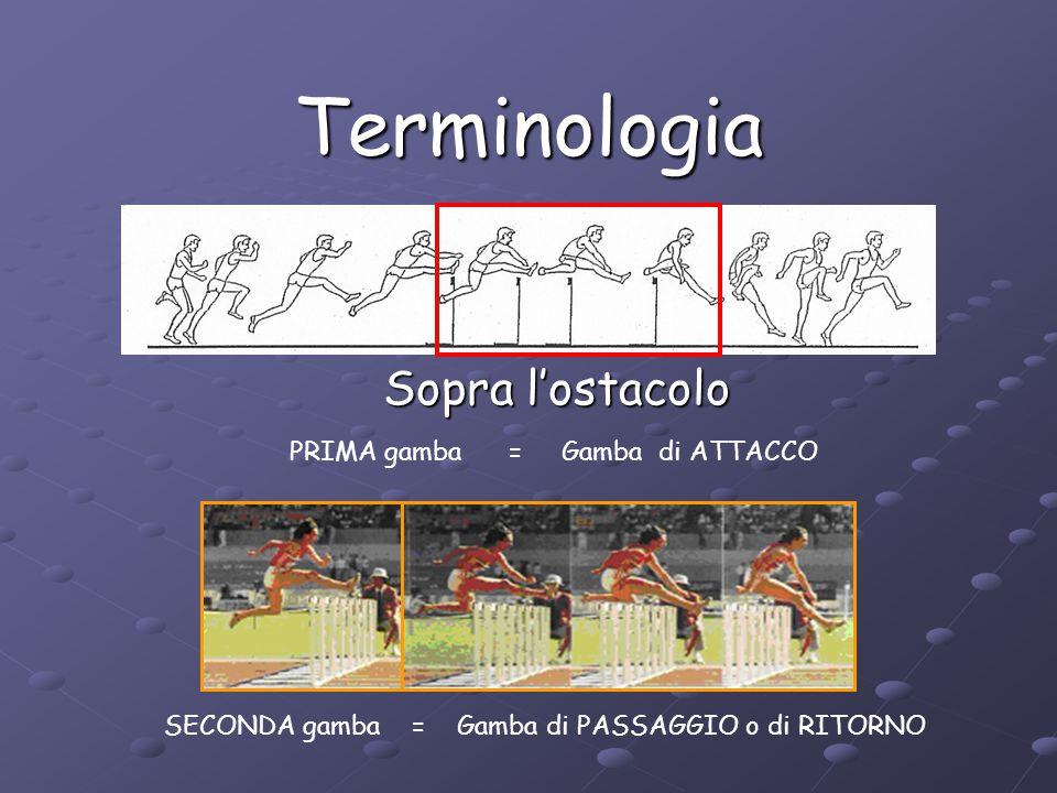 Terminologia Dopo l'ostacolo PRIMA gamba = Gamba di RIPRESA o di RICEZIONE SECONDA gamba = Gamba di PASSAGGIO o di RITORNO