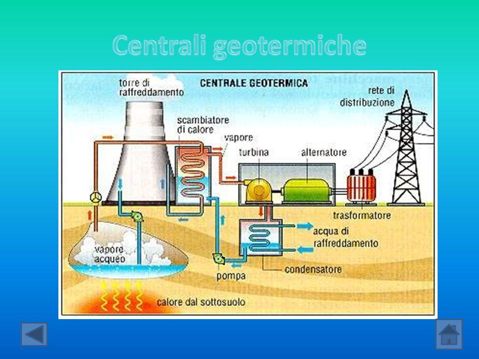 Dagli oli vegetali ricaviamo energia attraverso le centrali termoelettriche, però invece di bruciare oli derivanti dal petrolio vengono bruciati oli derivanti da vegetali.