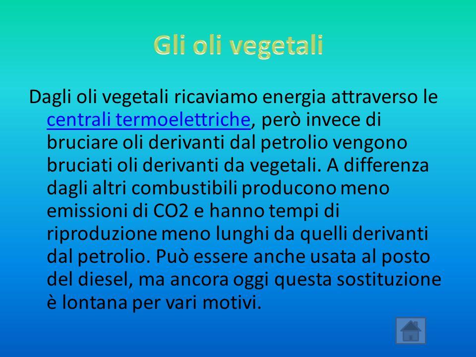 Dagli oli vegetali ricaviamo energia attraverso le centrali termoelettriche, però invece di bruciare oli derivanti dal petrolio vengono bruciati oli d