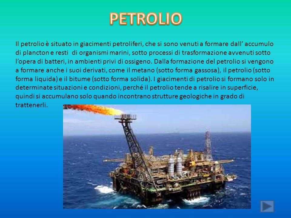 Il petrolio è situato in giacimenti petroliferi, che si sono venuti a formare dall' accumulo di plancton e resti di organismi marini, sotto processi d