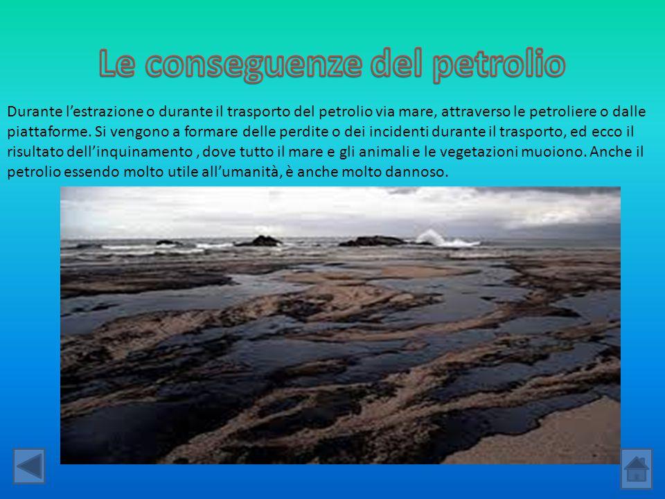 Durante l'estrazione o durante il trasporto del petrolio via mare, attraverso le petroliere o dalle piattaforme. Si vengono a formare delle perdite o