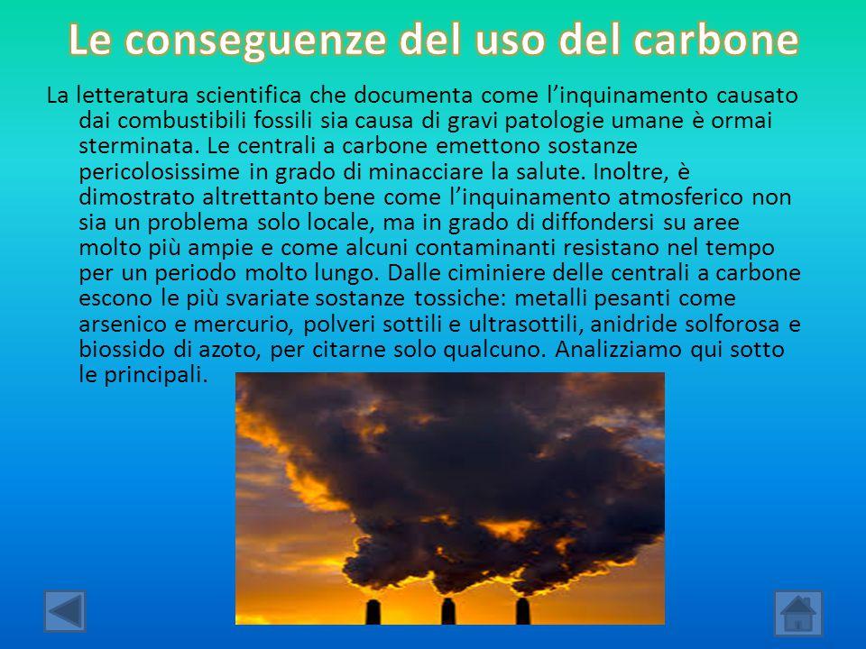 La letteratura scientifica che documenta come l'inquinamento causato dai combustibili fossili sia causa di gravi patologie umane è ormai sterminata. L