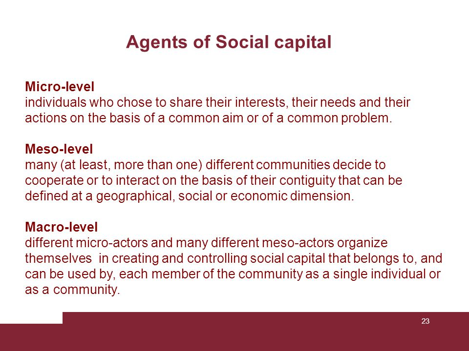 23 Agents of Social capital Micro-level individuals who chose to share their interests, their needs and their actions on the basis of a common aim or