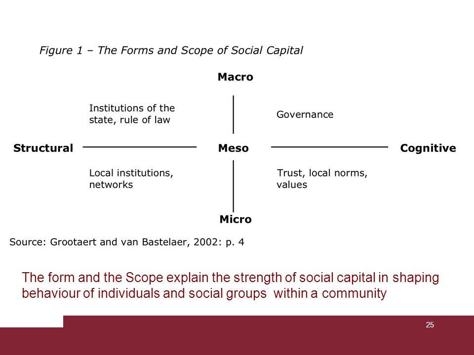 25 The form and the Scope explain the strength of social capital in shaping behaviour of individuals and social groups within a community