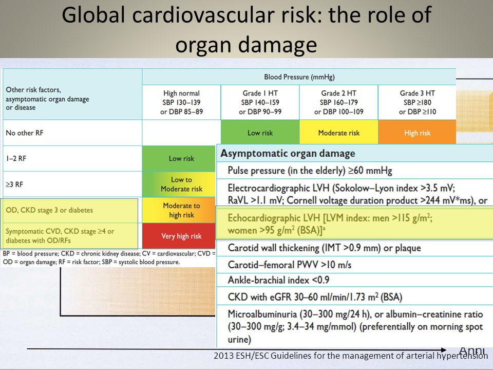 Global cardiovascular risk: the role of organ damage 2013 ESH/ESC Guidelines for the management of arterial hypertension