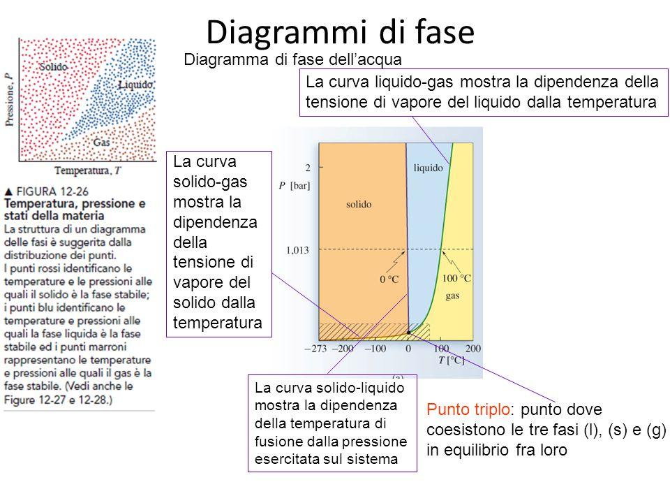 Diagrammi di fase La curva liquido-gas mostra la dipendenza della tensione di vapore del liquido dalla temperatura Punto triplo: punto dove coesistono