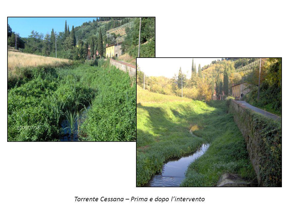 Torrente Cessana – Prima e dopo l'intervento