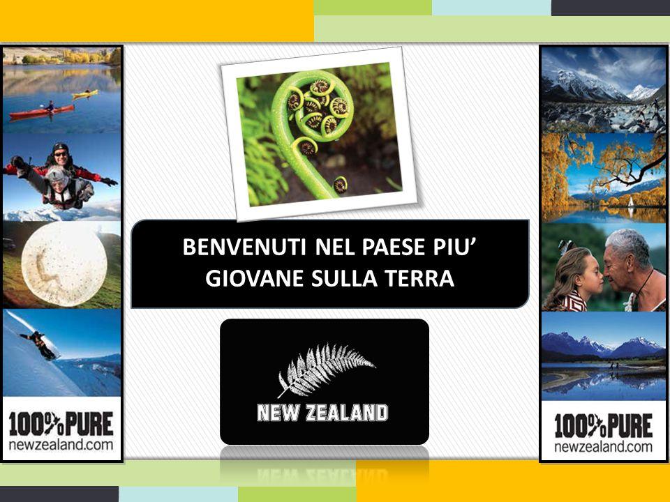 SISTEMAZIONE Alloggio in famiglia:  Distanza: da 25 a 40 minuti su trasporto pubblico dalla Cornell  Aiuta ad adattarsi al modo di vivere della Nuova Zelanda.