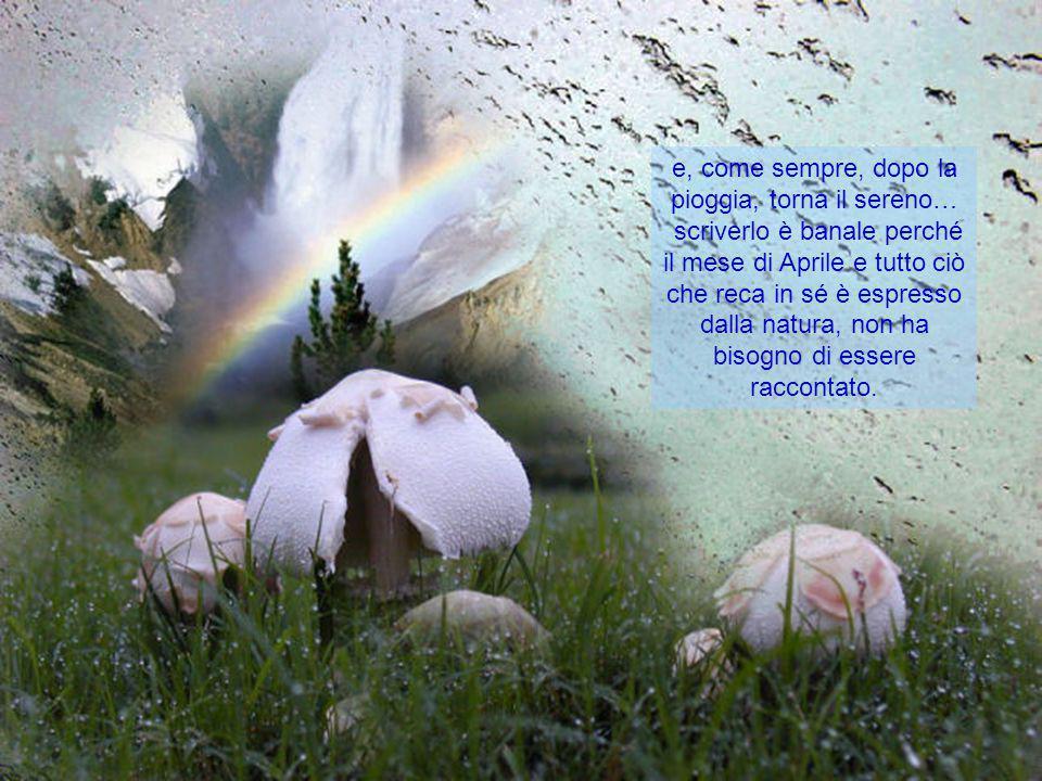 perle preziosissime dalle forme spettacolari
