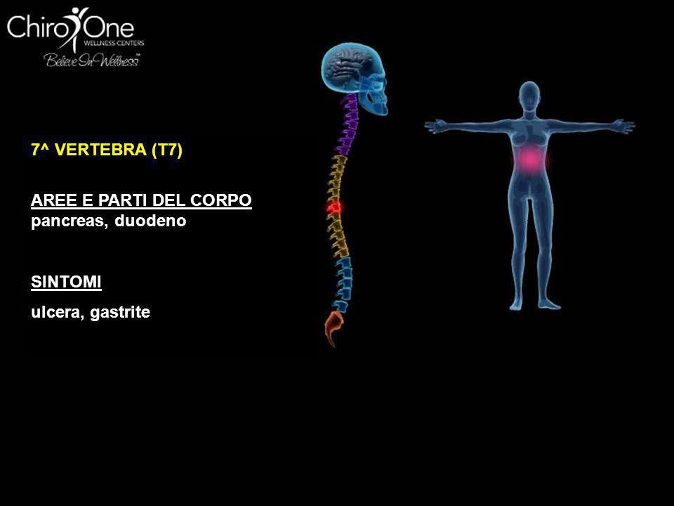 8^ VERTEBRA (T8) AREE E PARTI DEL CORPO milza SINTOMI ulcera, gastrite, stanchezza