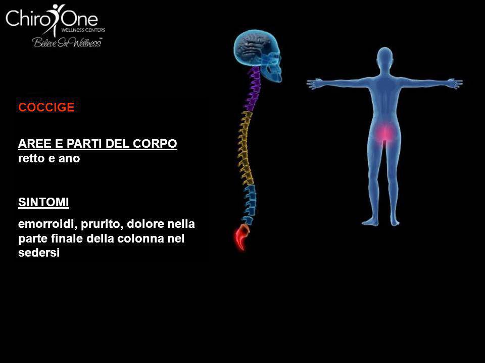6^ cervicale (C6) AREE E PARTI DEL CORPO muscoli del collo, spalle, tonsille SINTOMI torcicollo, dolori alle braccia, tonsilliti, tosse cronica, gobba