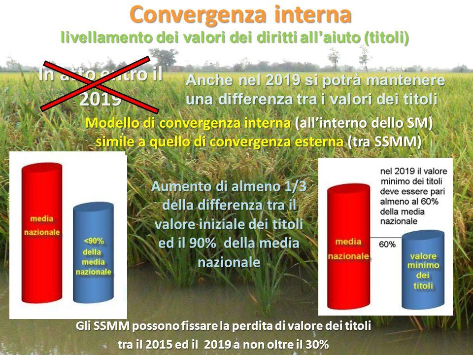 Convergenza interna Modello di convergenza interna (all'interno dello SM) simile a quello di convergenza esterna (tra SSMM) Aumento di almeno 1/3 dell