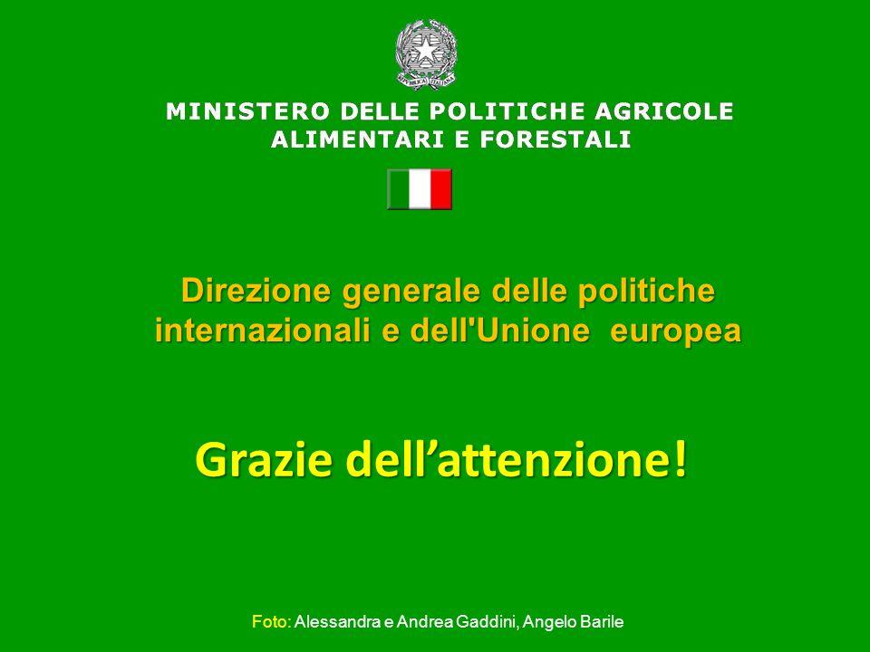Grazie dell'attenzione! Direzione generale delle politiche internazionali e dell'Unione europea Foto: Alessandra e Andrea Gaddini, Angelo Barile