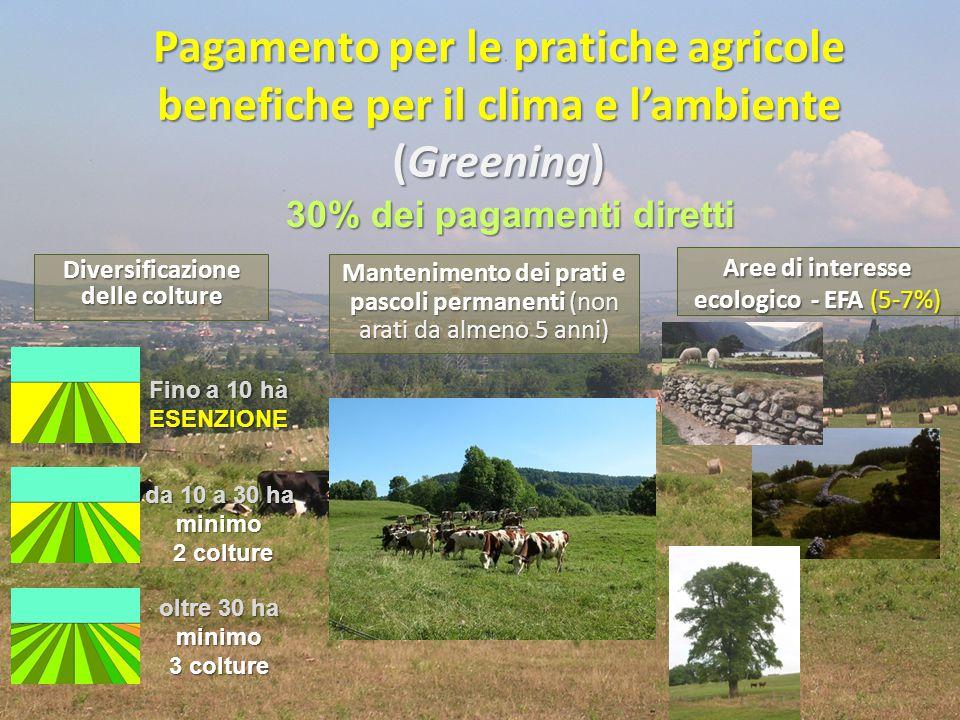 Pagamento per le pratiche agricole benefiche per il clima e l'ambiente (Greening) A richiesta dell'Italia: esenzione dagli obblighi per il riso e per le colture permanenti (EFA) esenzione dagli obblighi per le aziende biologiche o che aderiscono a misure agroambientali o munite di certificazioni ambientali