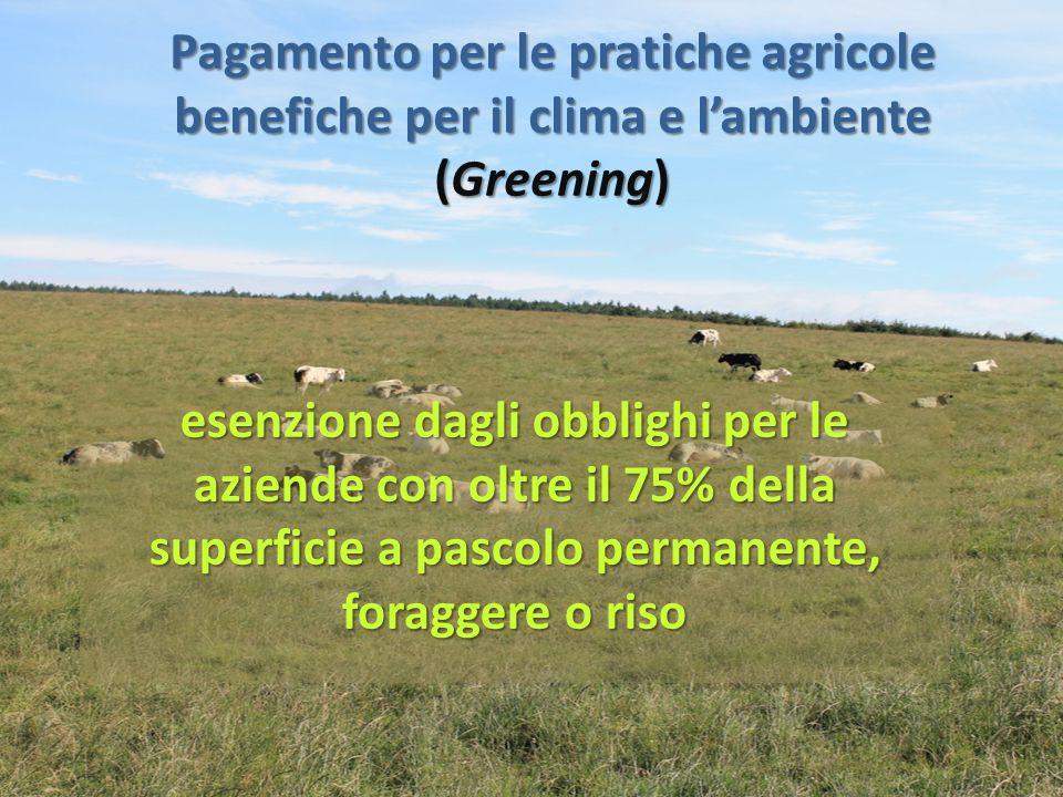 Pagamento per le pratiche agricole benefiche per il clima e l'ambiente (Greening) esenzione dagli obblighi per le aziende con oltre il 75% della super