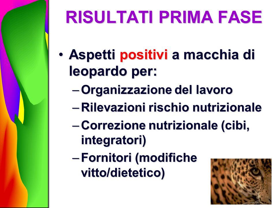 RISULTATI PRIMA FASE Aspetti positivi a macchia di leopardo per:Aspetti positivi a macchia di leopardo per: –Organizzazione del lavoro –Rilevazioni ri