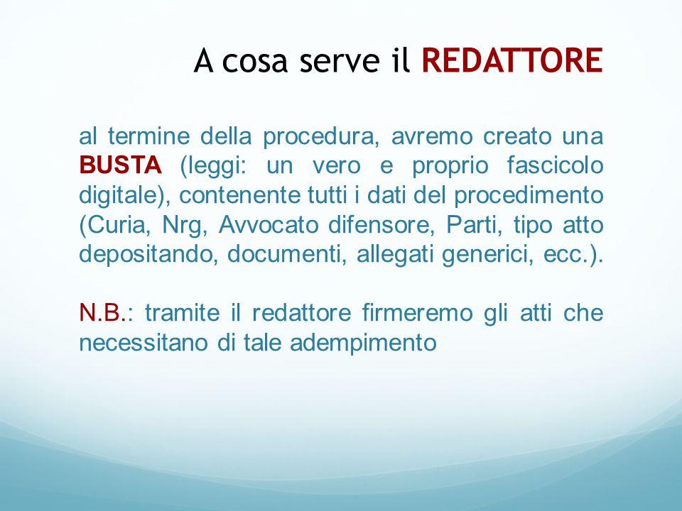 al termine della procedura, avremo creato una BUSTA (leggi: un vero e proprio fascicolo digitale), contenente tutti i dati del procedimento (Curia, Nr
