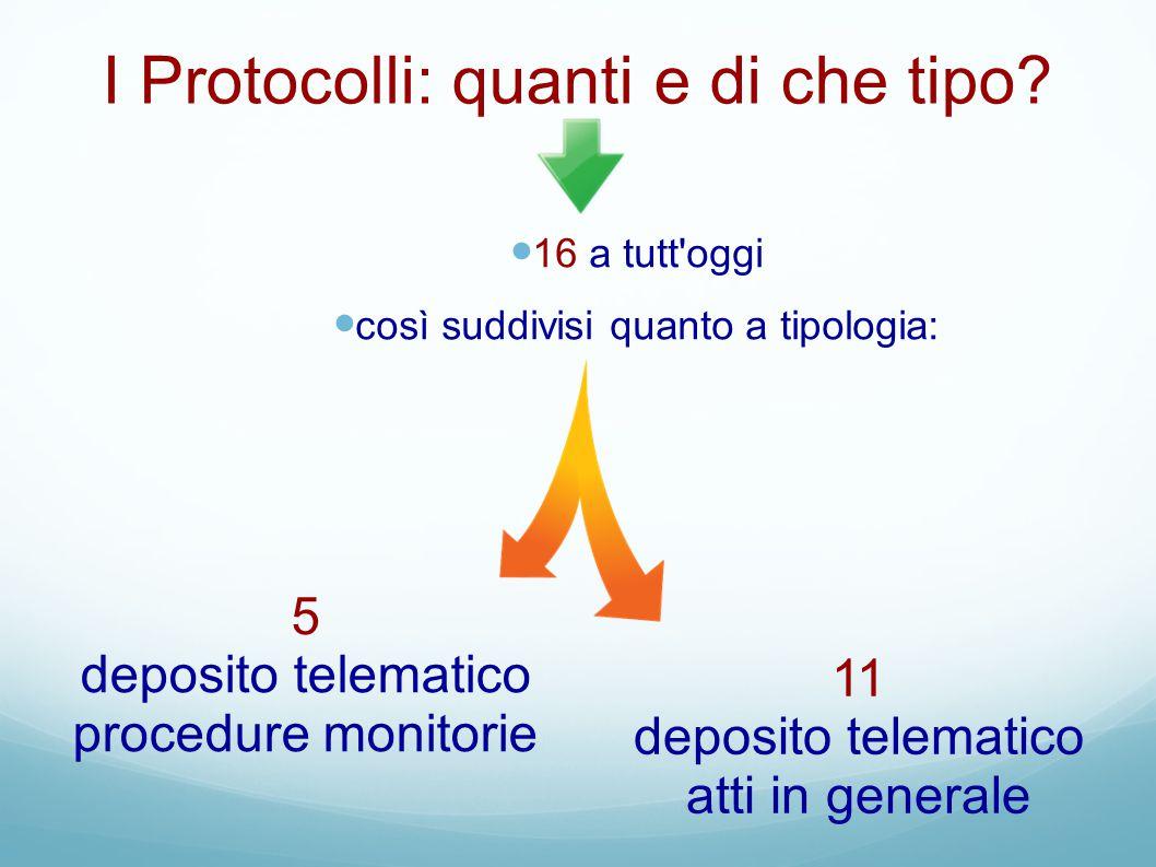 I Protocolli: quanti e di che tipo? 16 a tutt'oggi così suddivisi quanto a tipologia: 5 deposito telematico procedure monitorie 11 deposito telematico