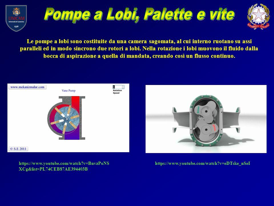 Le pompe a lobi sono costituite da una camera sagomata, al cui interno ruotano su assi paralleli ed in modo sincrono due rotori a lobi. Nella rotazion
