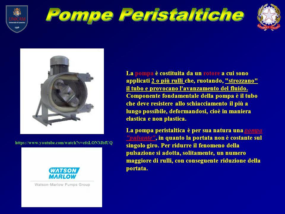 https://www.youtube.com/watch?v=c6sLONMbfUQ La pompa è costituita da un rotore a cui sono applicati 2 o più rulli che, ruotando,