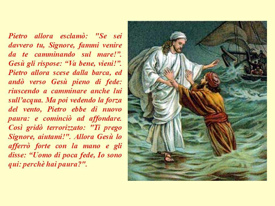 Gesù li vide dalla montagna, e subito si gettò in mare: e per arrivare prima, cominciò a camminare sull'acqua. Vedendo un uomo camminare sul mare però