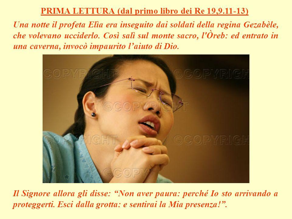 Pietro allora esclamò: Se sei davvero tu, Signore, fammi venire da te camminando sul mare! .