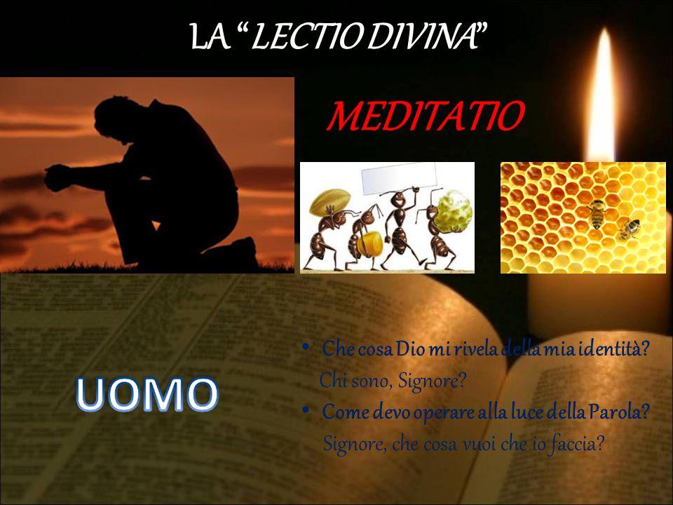 """LA """"LECTIO DIVINA"""" MEDITATIO Che cosa Dio mi rivela della mia identità? Chi sono, Signore? Come devo operare alla luce della Parola? Signore, che cosa"""