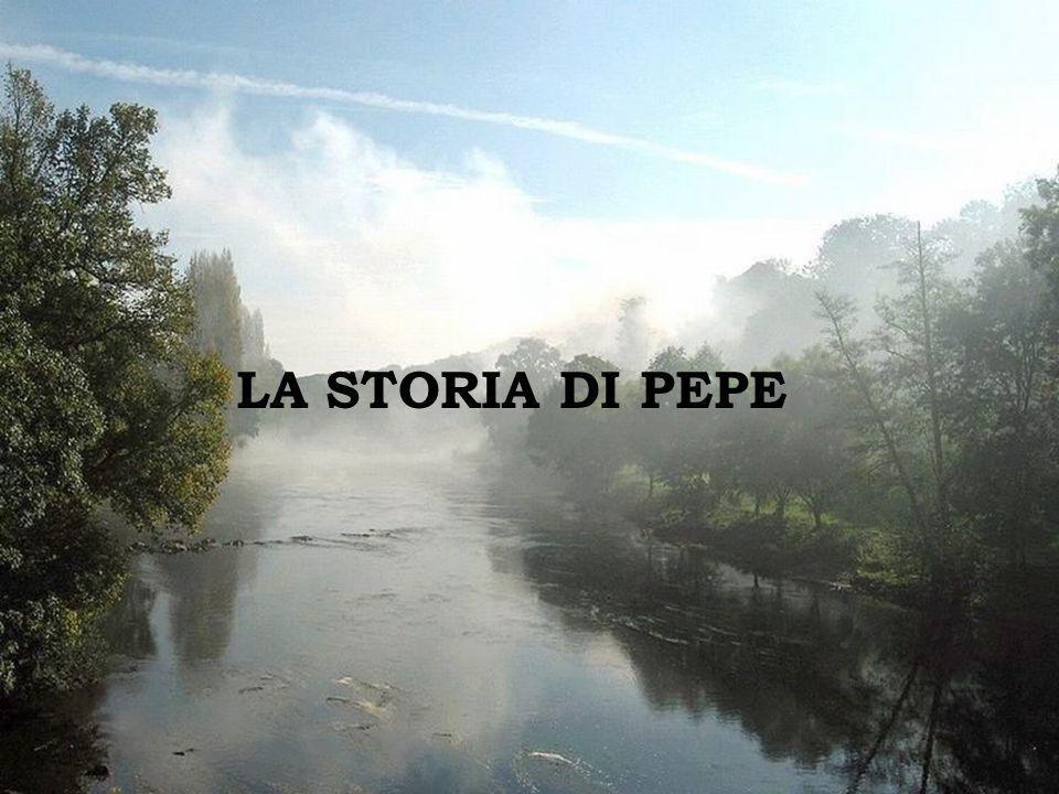 Ravello Sei mesi dopo, ho trovato Pepe e quando gli ho chiesto come stava, la risposta fu invariabilmente: Non riesco a stare meglio