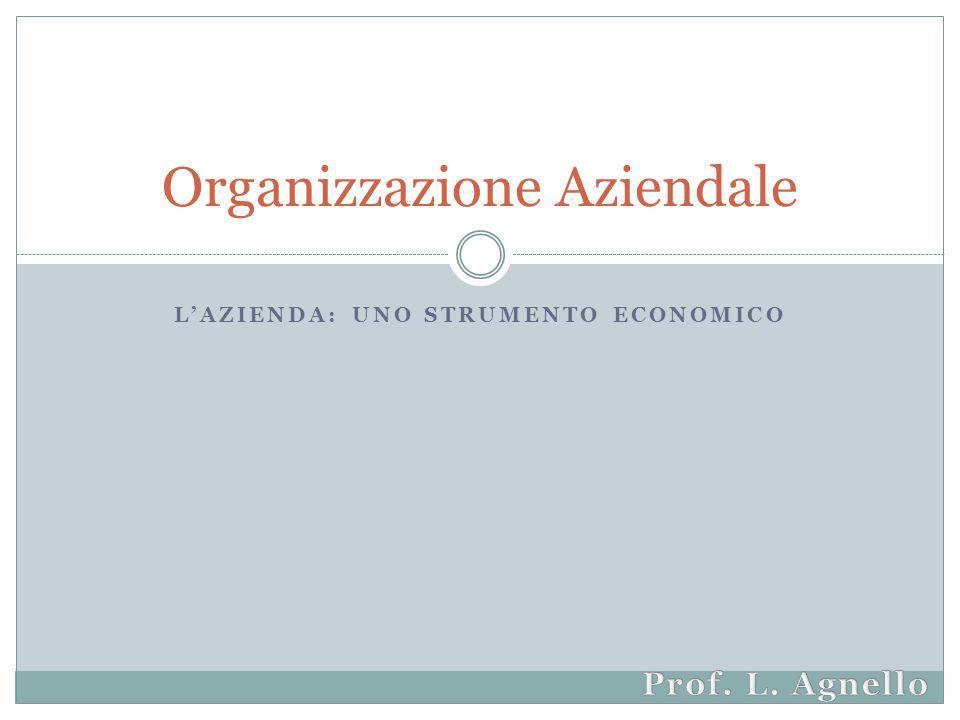 L'AZIENDA: UNO STRUMENTO ECONOMICO Organizzazione Aziendale