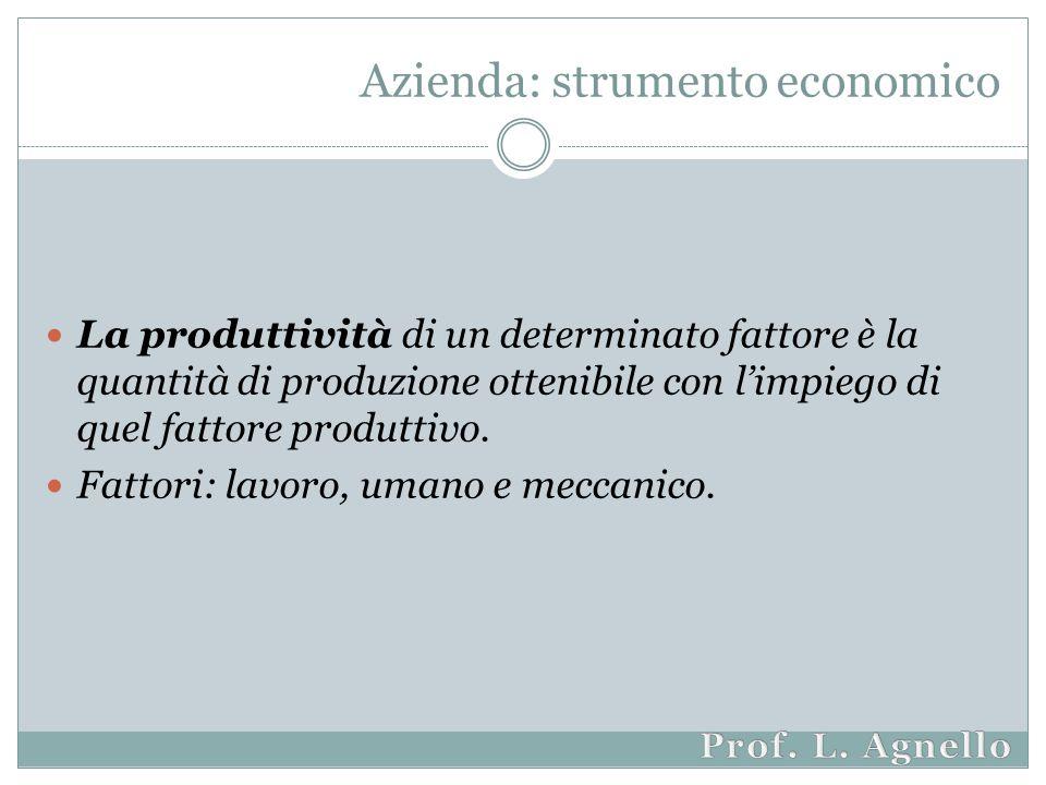 Azienda: strumento economico La produttività di un determinato fattore è la quantità di produzione ottenibile con l'impiego di quel fattore produttivo.