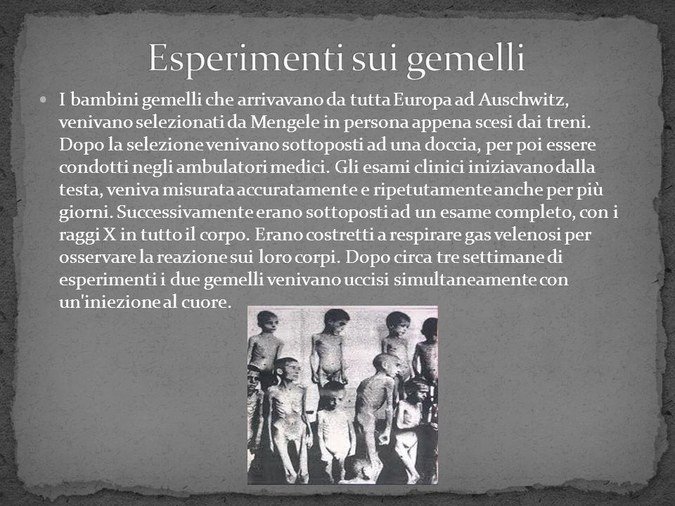 I bambini gemelli che arrivavano da tutta Europa ad Auschwitz, venivano selezionati da Mengele in persona appena scesi dai treni. Dopo la selezione ve