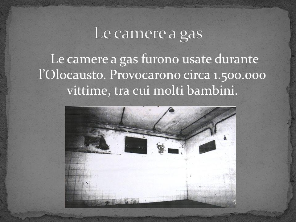 Le camere a gas furono usate durante l'Olocausto. Provocarono circa 1.500.000 vittime, tra cui molti bambini.