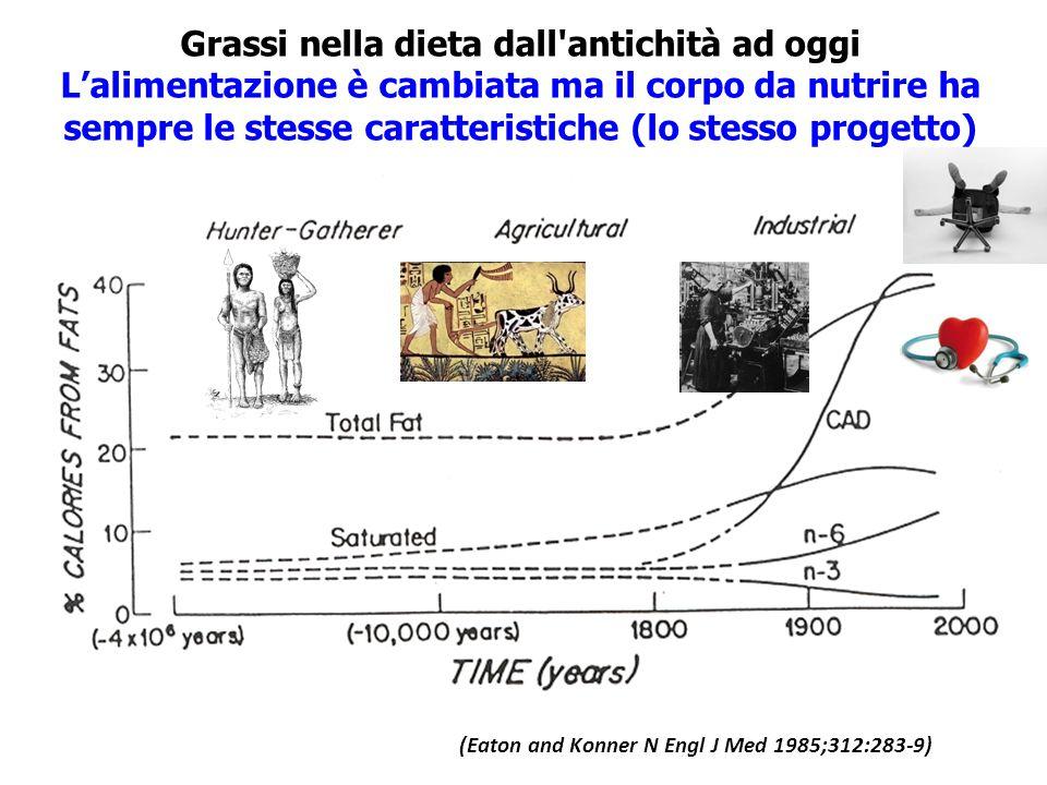 Grassi nella dieta dall'antichità ad oggi L'alimentazione è cambiata ma il corpo da nutrire ha sempre le stesse caratteristiche (lo stesso progetto) (