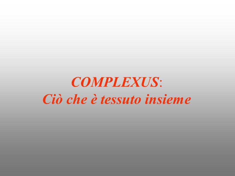 COMPLEXUS: Ciò che è tessuto insieme