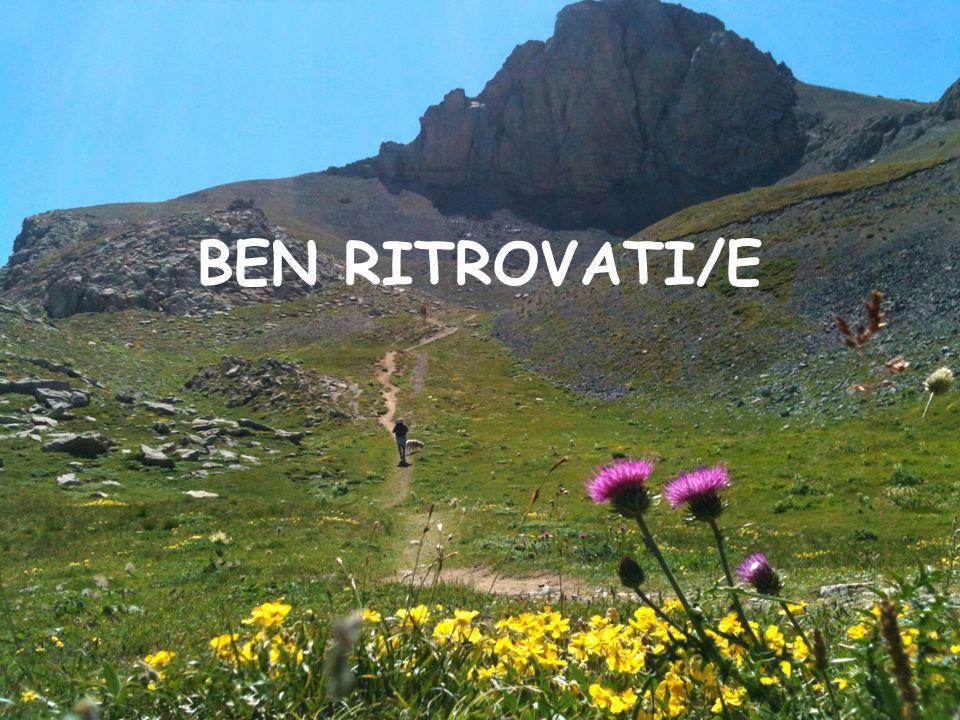BEN RITROVATI/E