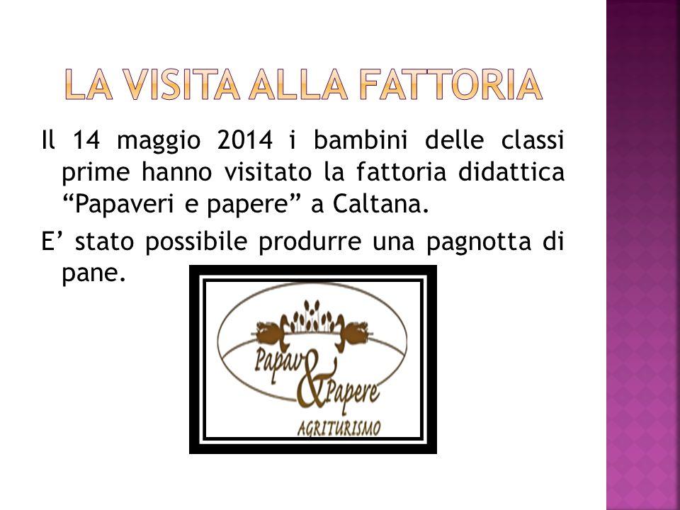 Il 14 maggio 2014 i bambini delle classi prime hanno visitato la fattoria didattica Papaveri e papere a Caltana.