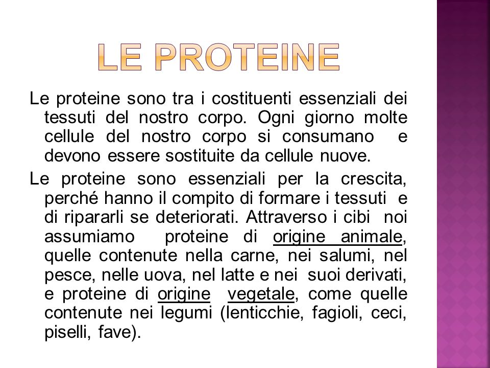 Le proteine sono tra i costituenti essenziali dei tessuti del nostro corpo.
