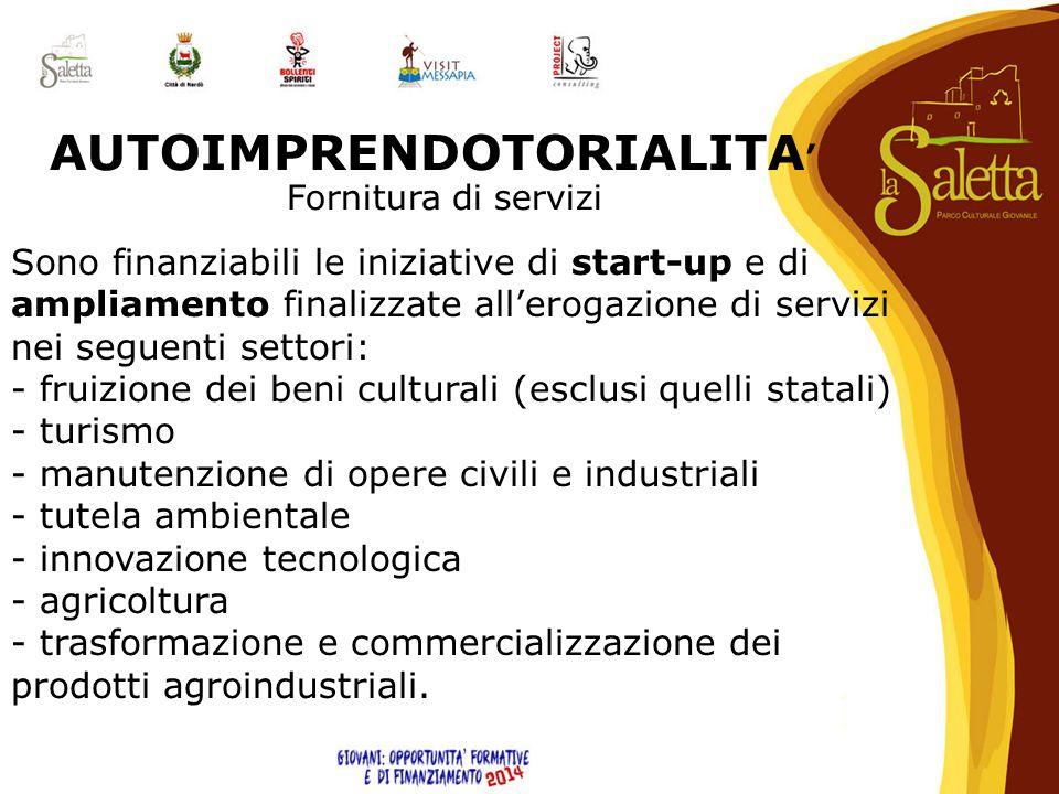 Sono finanziabili le iniziative di start-up e di ampliamento finalizzate all'erogazione di servizi nei seguenti settori: - fruizione dei beni cultural