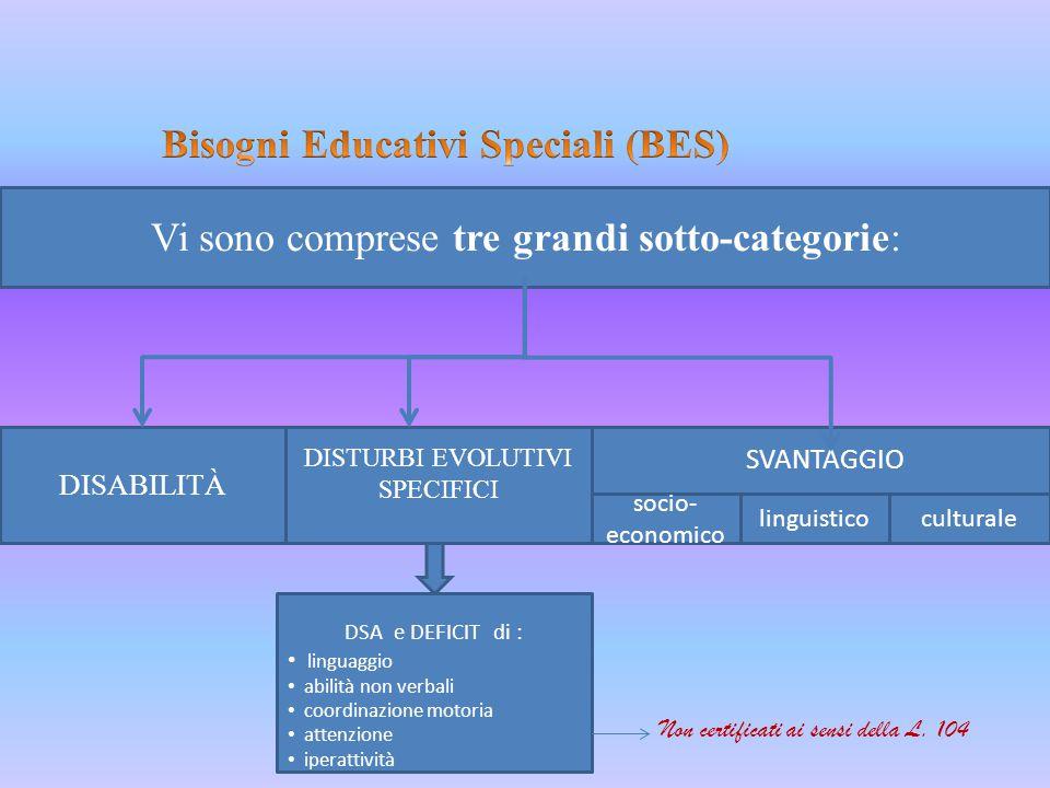 Vi sono comprese tre grandi sotto-categorie: DISABILITÀ DISTURBI EVOLUTIVI SPECIFICI socio- economico linguisticoculturale SVANTAGGIO DSA e DEFICIT di