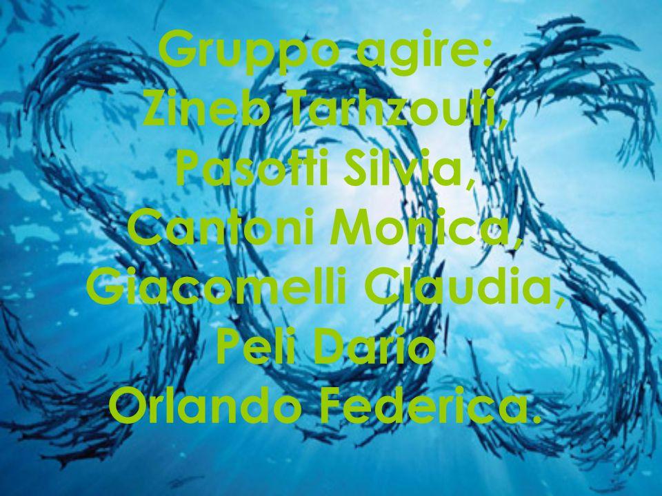 Gruppo agire: Zineb Tarhzouti, Pasotti Silvia, Cantoni Monica, Giacomelli Claudia, Peli Dario Orlando Federica.
