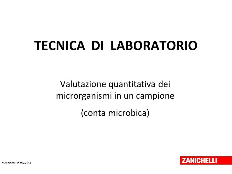 © Zanichelli editore 2013 Altre tecniche di conta microbica Turbidimetria Bioluminescenza Impedenzometria