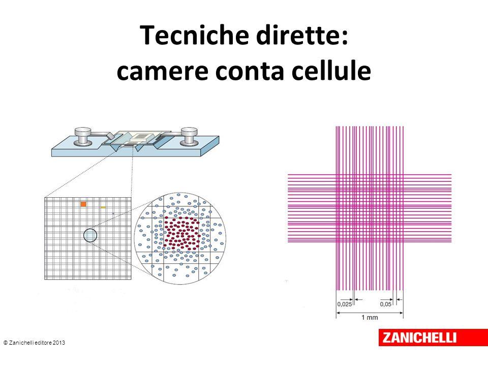 © Zanichelli editore 2013 Tecniche dirette: camere conta cellule