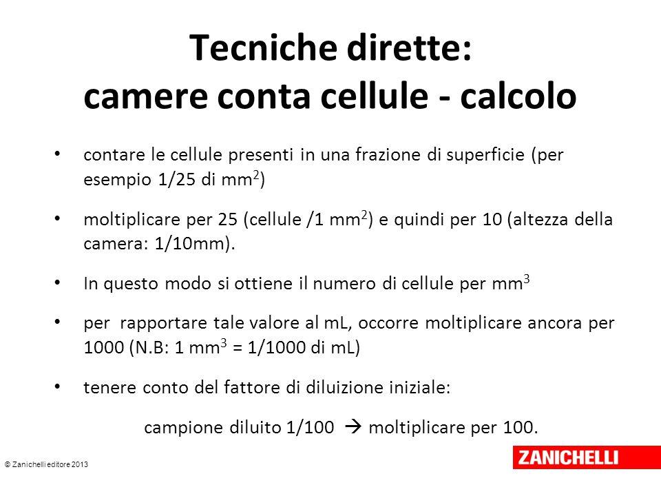 © Zanichelli editore 2013 Tecniche dirette: camere conta cellule - calcolo contare le cellule presenti in una frazione di superficie (per esempio 1/25 di mm 2 ) moltiplicare per 25 (cellule /1 mm 2 ) e quindi per 10 (altezza della camera: 1/10mm).