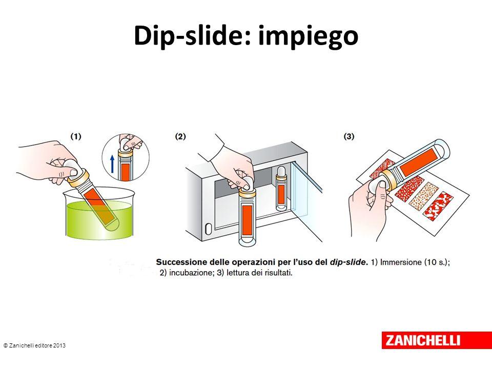© Zanichelli editore 2013 Dip-slide: impiego