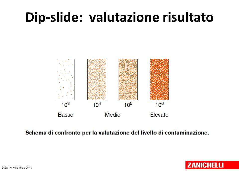 © Zanichelli editore 2013 Dip-slide: valutazione risultato